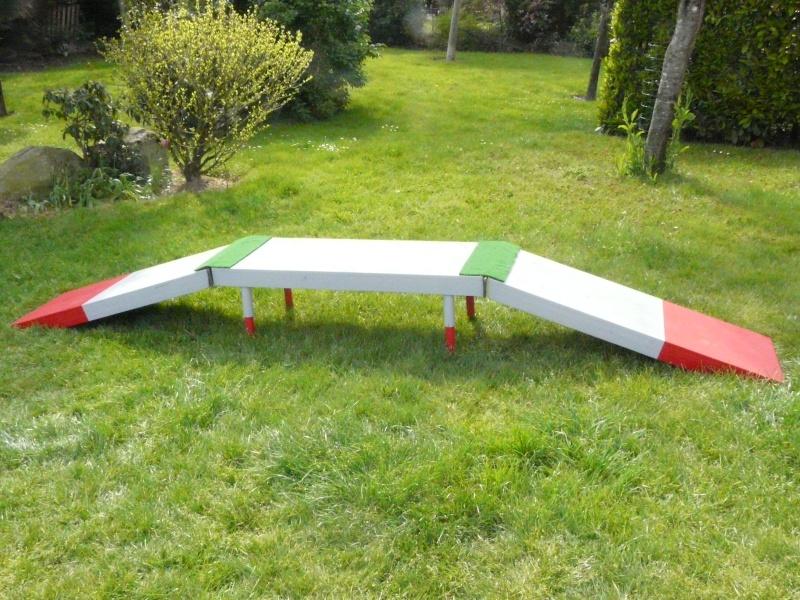 chiot - Fabricant D'obstacles d'agility--Obstacles évolutif--Agrès multi éveil chiot--PRO-- P1040111