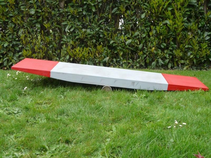 chiot - Fabricant D'obstacles d'agility--Obstacles évolutif--Agrès multi éveil chiot--PRO-- P1040112