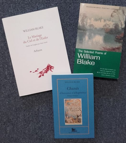 Ma collection William Blake Biblio17