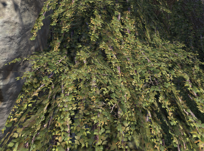 Herbier : la Flore du Couchant Screen76