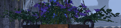 Herbier : la Flore du Couchant Screen89