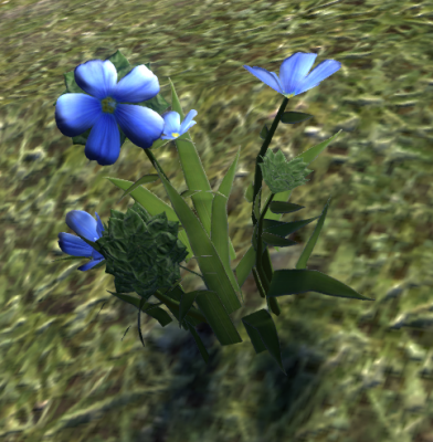 Herbier : la Flore du Couchant Screen92