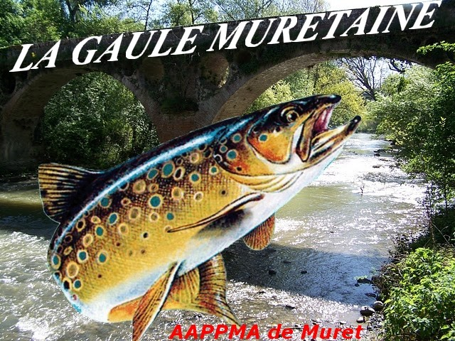 La Gaule Muretaine