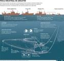 la pesca de arrastres crea problemas en los fondos marinos por una pesca sostenible y responasable ,apuesta por la pesca artesanal