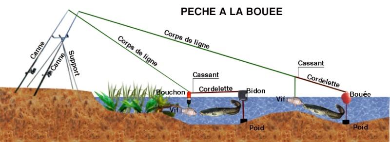 Bouée Silure Bouae10