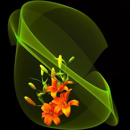 Offrons-nous une fleur ... - Page 2 Fleur-10