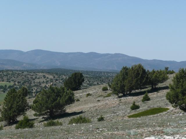 P'tites randonnées VTT en Espagne P1020412