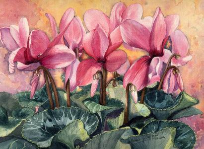 Fleurs aquarelles 005_cy10