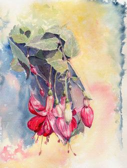 Fleurs aquarelles 011_fu10