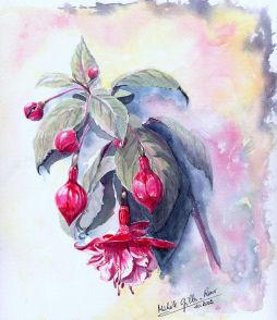 Fleurs aquarelles 012_fu10