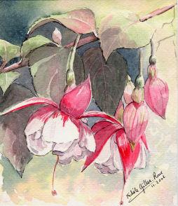 Fleurs aquarelles 013_fu10