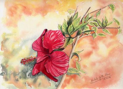 Fleurs aquarelles 018_hi11