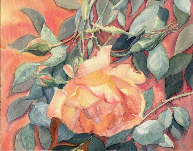 Fleurs aquarelles 028_ro11