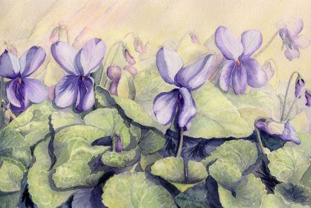 Fleurs aquarelles 068_vi10