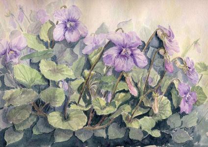 Fleurs aquarelles 069_vi10