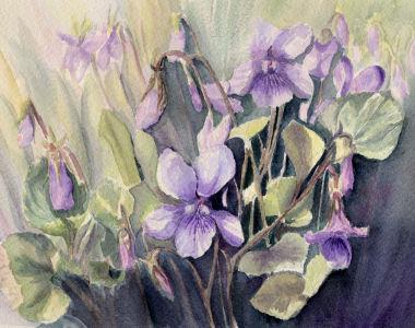 Fleurs aquarelles 070_vi10