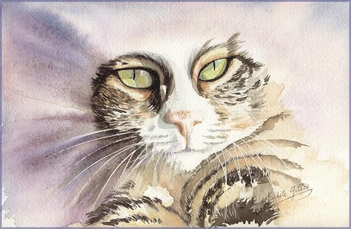 Chat aquarelle - Page 2 Chat1411