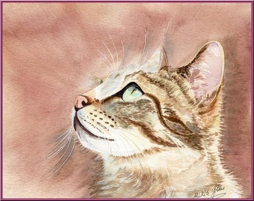 Chat aquarelle Chatdu13