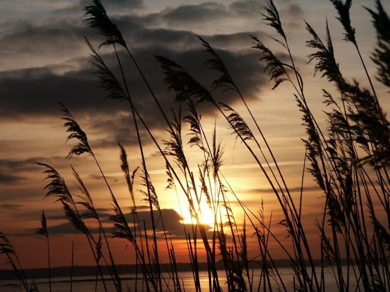 Quand le soleil descend sur la mer Cou-210