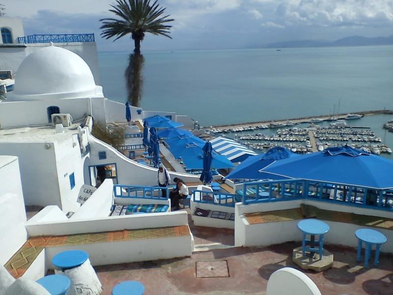 La café des délices/Tunisie Dsc00110