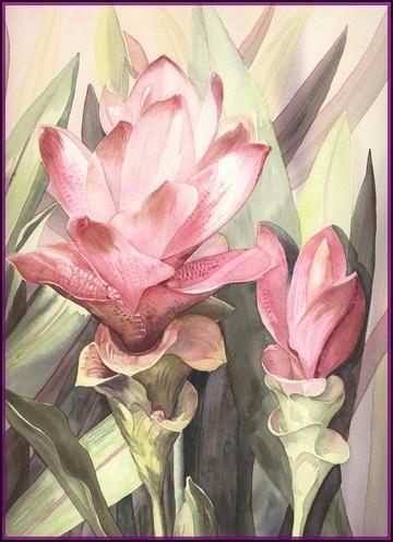 Fleurs aquarelles Fleurs10