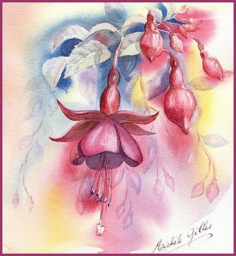 Fleurs aquarelles Fuschi10