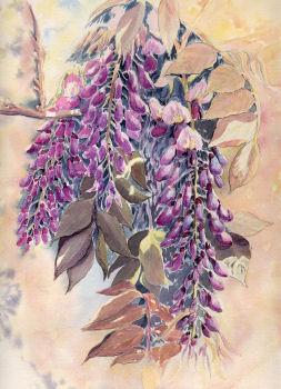 Fleurs aquarelles Q510