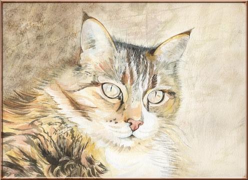 Chat aquarelle Tablea10