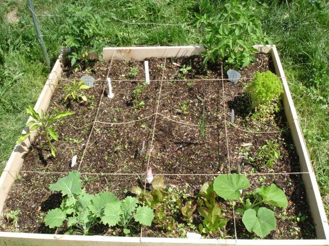 Garden Girl Dsc00321