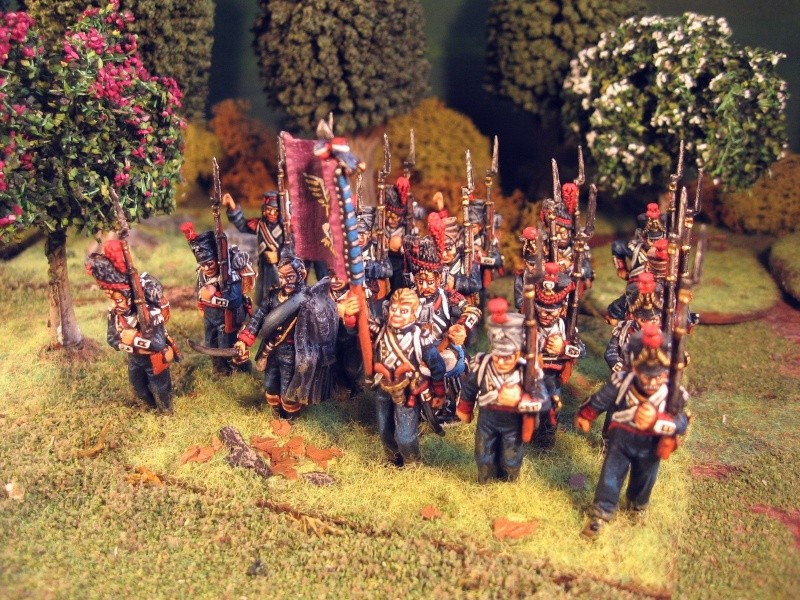 Ils combattaient pour la France Grenad14