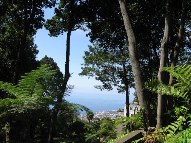 Photos de jardins, parcs, forêts... dans le monde Img_0210