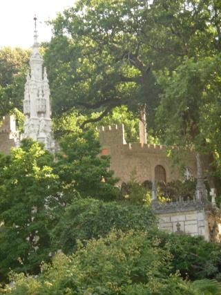Photos de jardins, parcs, forêts... dans le monde Sam_0313