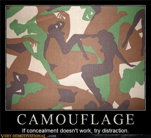 Which Camouflage Do You Prefer? 12913911