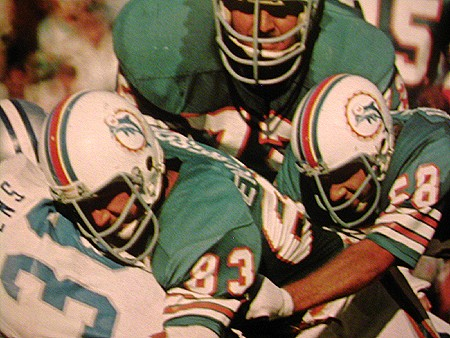 1969 (and 1973) Miami Dolphins corrections 2logos11