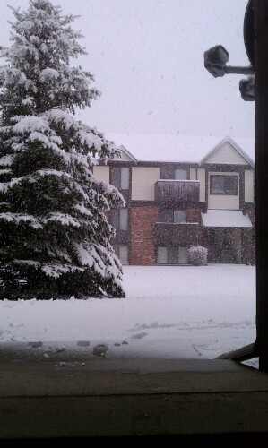 Photography - Page 2 Snow_d10