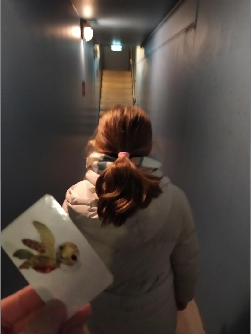 (re)Découvrir la Saison de NOËL en séjour mère-fille  nov-2019 et finir au Castle Club !! (Terminé) - Page 6 Img_2270