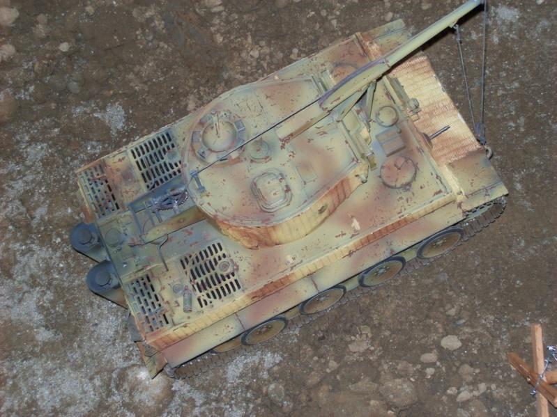 La Storia sulla diffusione dei carri armati in scala 1-16 in Italia. - Pagina 2 100_9011