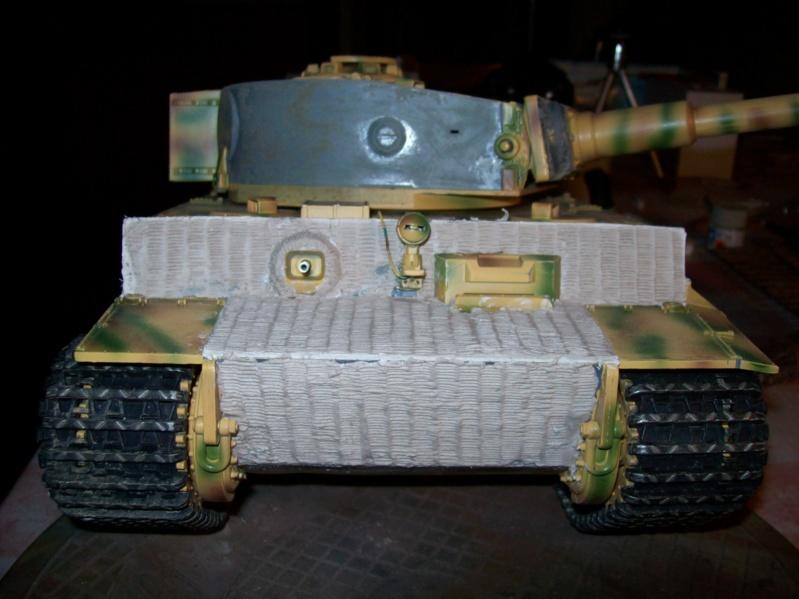 La Storia sulla diffusione dei carri armati in scala 1-16 in Italia. - Pagina 8 100_9125