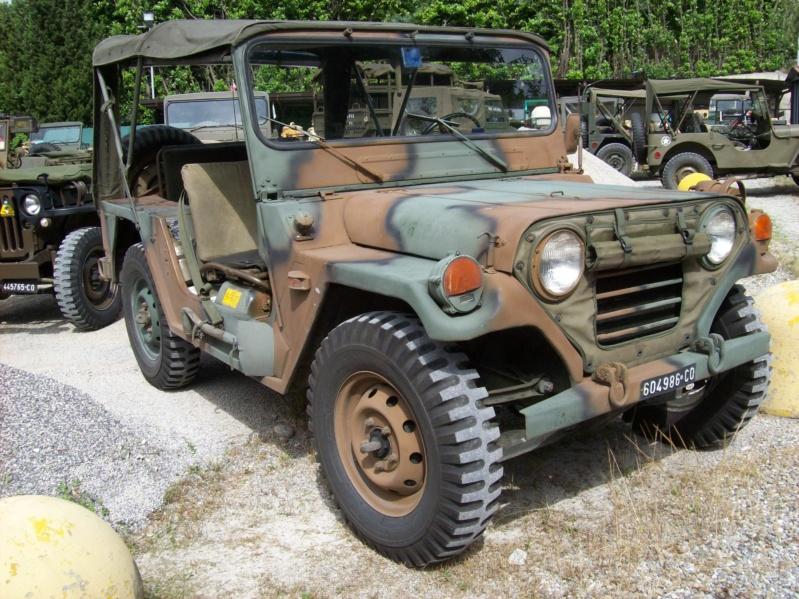 La Storia sulla diffusione dei carri armati in scala 1-16 in Italia. - Pagina 6 100_9414