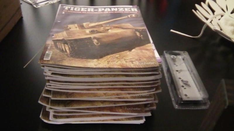 La Storia sulla diffusione dei carri armati in scala 1-16 in Italia. - Pagina 9 Sam_8810