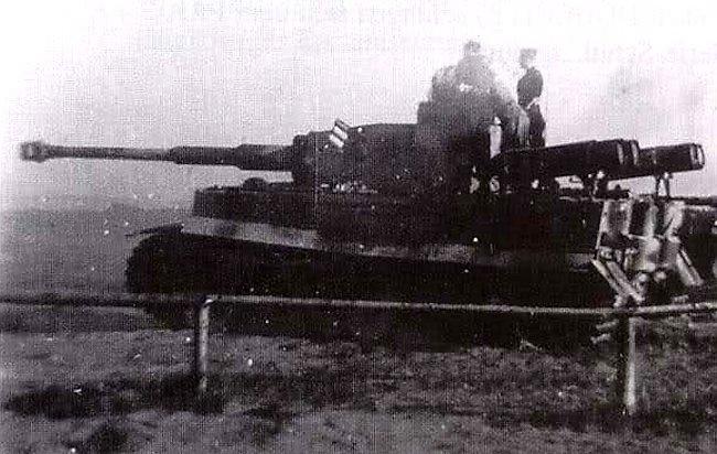 La Storia sulla diffusione dei carri armati in scala 1-16 in Italia. - Pagina 9 Tiger-12