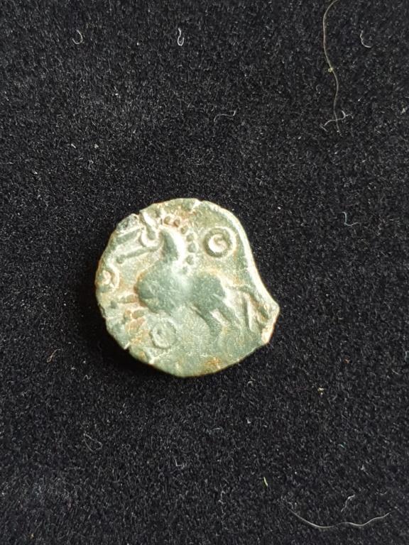 Bronze à identifier Gauloi12