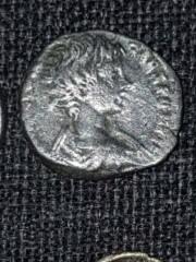 Romaine ou grecque Lot_ce12