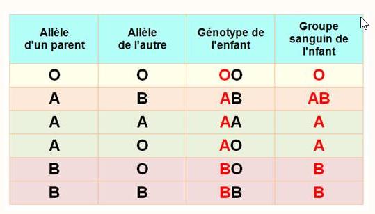 CoronaVirus (covid-19) - Page 6 Groupe10