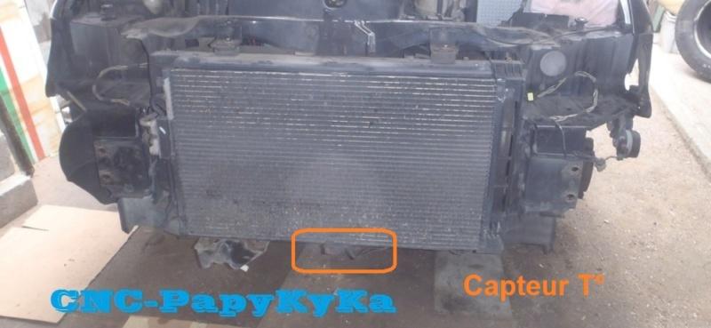 detecteur température P7040011