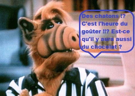 Humour du Jour..toujours :) - Page 6 514