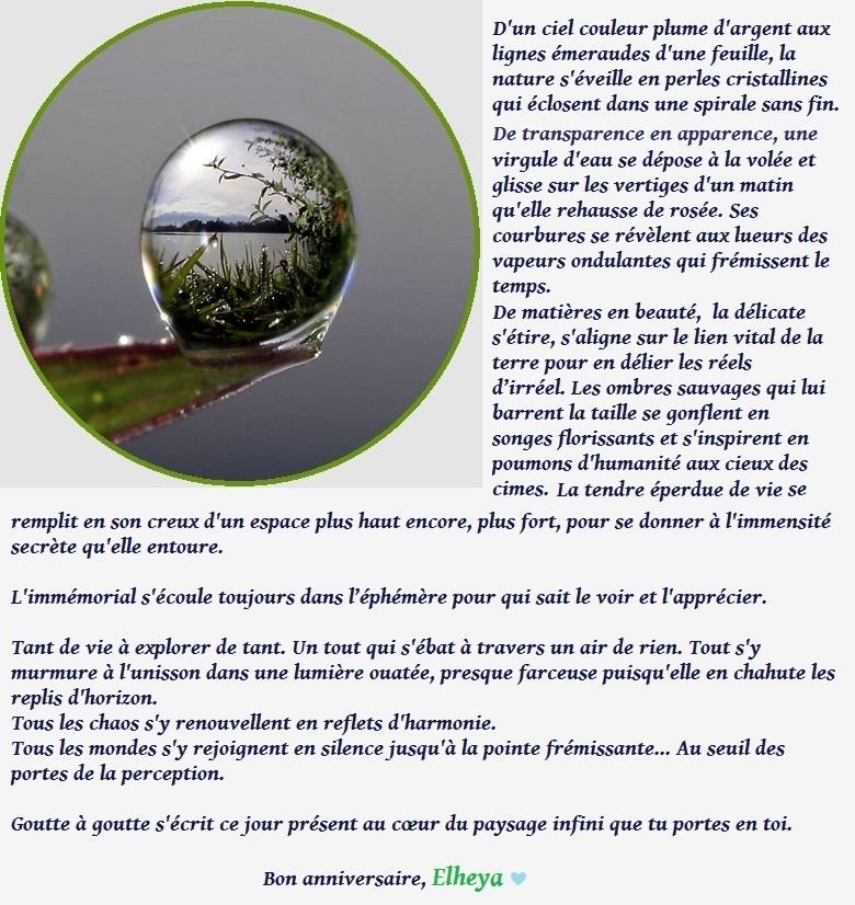 Bon anniversaire, Elheya ! - Page 2 Elheya12