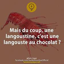 Chocolatine ou Pain au chocolat ? Images13