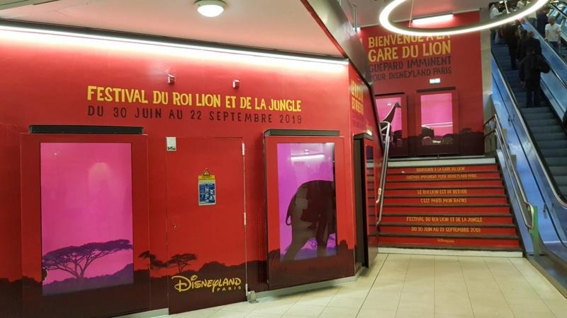 [Saison] Festival du Roi Lion et de la Jungle du 30 juin au 22 septembre 2019 - Page 8 D8pgmo10