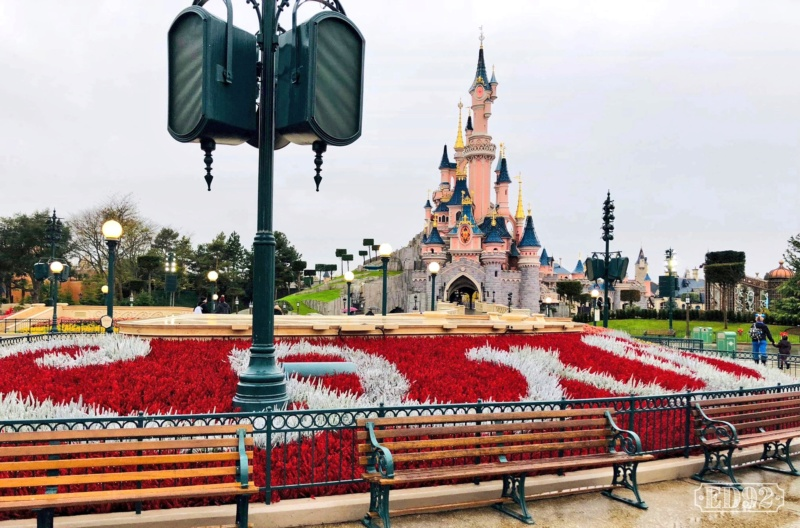 [Saison] Le Noël Enchanté Disney : une célébration Mickeyfique (2018-2019) - Page 6 Img_2040